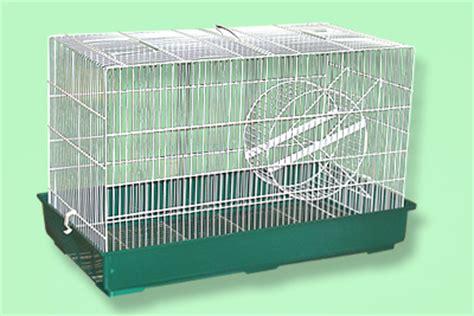 gabbia scoiattolo catalogo prodotti gisaro srl