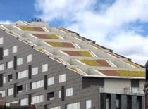 apex green roofs professional green roof design greenroofs com projects macallen building