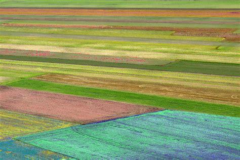 la fiorita di castelluccio castelluccio di norcia la fiorita foto immagini