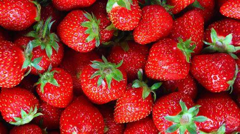 how to hull fresh strawberries video healthination