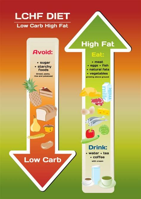 Detox Diet Versus High Protein Die by 1000 Images About Lchf Keto Tips For This Woe Way