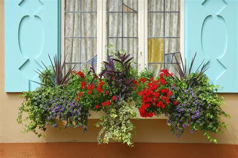 flower window box ideas 32 stunning flower box ideas arrangements