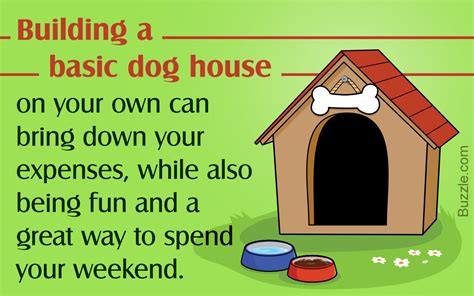 easy way to build a dog house a visual guide on how to build a dog house in 8 simple steps