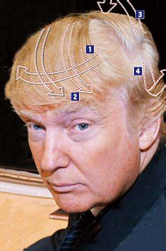 donald hair diagram a step by step guide to the gravity defying donald