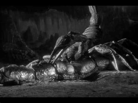 the black scorpion underground battle youtube