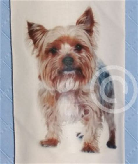 yorkie carrier bags terrier cotton carrier bag holder yorkie ebay
