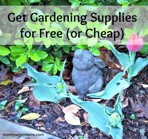 the budget wise gardener with hundreds of money saving buying design tips for planting the best for less books get gardening supplies for free or cheap moneywise