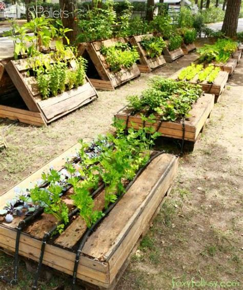 perfect raised garden beds    pallets