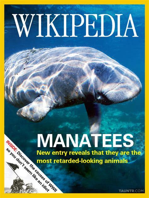 magazine layout wikipedia wikipedia redesigned as magazine orangeinks