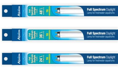 t8 full spectrum fluorescent light bulbs aqueon full spectrum daylight t8 fluorescent l 25 w 36 quot