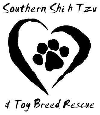 southern shih tzu rescue southern shih tzu and breed rescue pet services anniston al phone number yelp