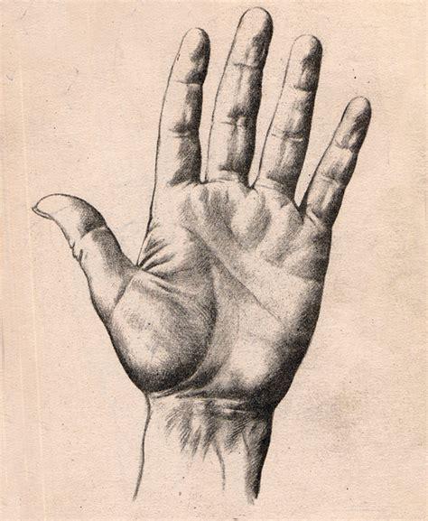 Imagenes A Lapiz De Manos | dibujos de mano a lapiz imagui