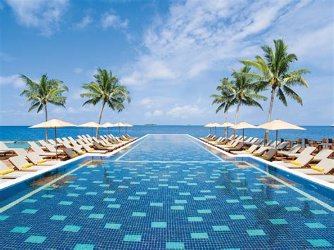 top 10 cool pools for a summer day luxeinacity