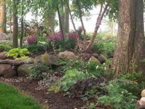 shade garden coral bells hostas mondo grass boston ivy