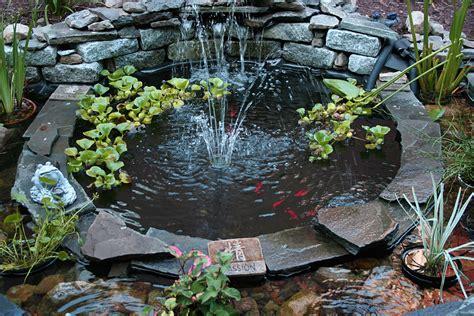 membuat rumah ikan cara membuat kolam ikan koi desain minimalis di depan