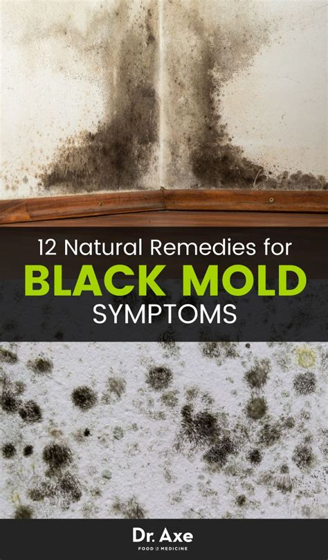 Mold Detox Symptoms by 8 Signs You Need A Black Mold Detox Articles House And