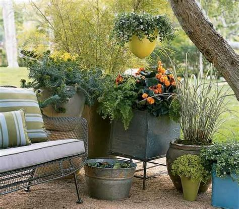 backyard shrubs privacy use plants for backyard privacy shortcuts to a backyard makeover real simple