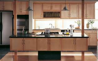Sample Kitchen Cabinets Samples Of Kitchen Cabinets