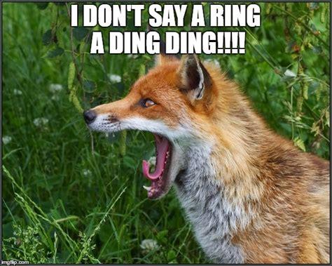 Fox Meme - screaming fox imgflip