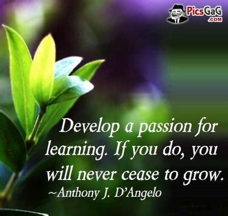 inspirational quotes  philosophy  education quotesgram