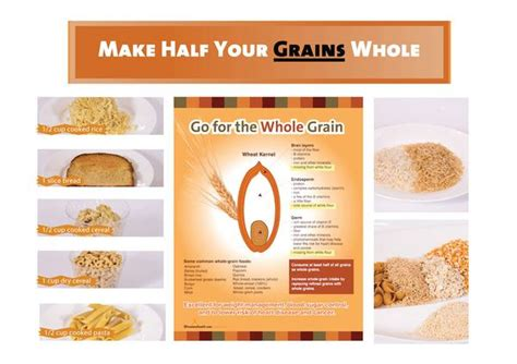 whole grains for 12 month whole grain bulletin board kit 29 00 nutrition