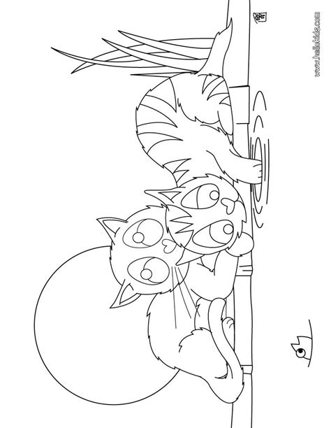 cats playing coloring pages playing kittens coloring pages hellokids com