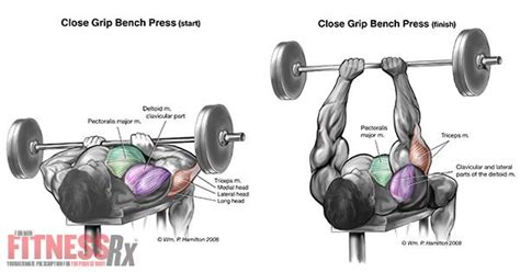 neck pain from bench press jay cutler supplements bpi neck back and shoulder pain inner chest workout bench press