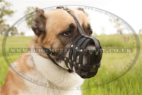 large muzzle soft muzzle for large dogs big muzzle for alabai 163 28 98