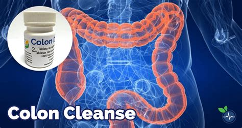 Does Speed Detox Flush The Waste Work by Best Colon Cleanse For Weight Loss Reviews 2017
