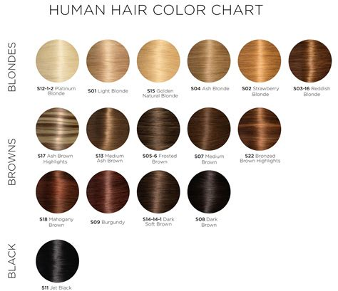 what color is my hair chart hair colors chart these hair color charts will help you