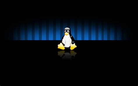 wallpaper hd 1920x1080 linux linux widescreen wallpapers hd wallpapers id 7119