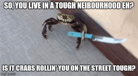 Crab Meme - gangsta crab don t need no gat imgflip