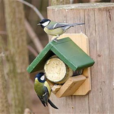 training wood project access wooden peanut butter bird feeder