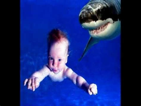 baby shark non stop shark eats baby warning extreme content youtube