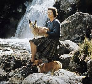corgis elizabeth the queen s corgis holly and willow could be the last for