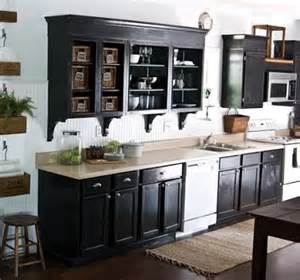 White Or Black Kitchen Cabinets Black Cabinets With White Appliances Native Home Garden