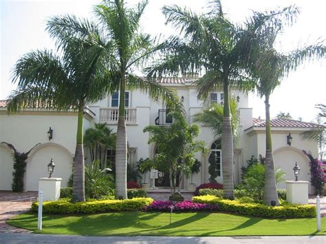 palm landscape design date palm