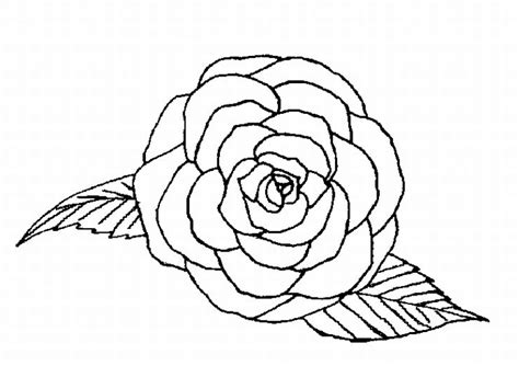 single rose coloring page single rose coloring pages coloring coloring pages