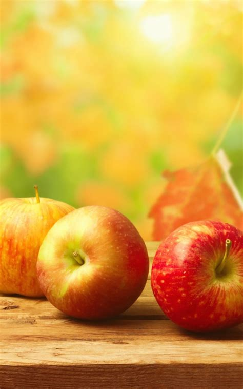 wallpaper apple portrait autumn apples wood table android wallpaper free download