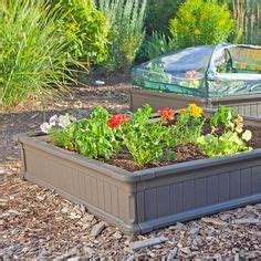 lifetime raised garden bed 1000 images about lawn garden on pinterest lawn patio and vegetable garden