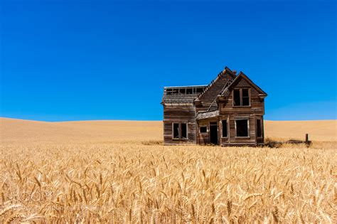 quot welcome home quot an abandoned home surrounded by wheat