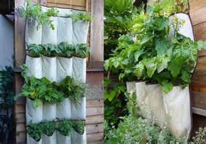 Gardening Ideas For Small Spaces 5 Gardening Ideas For Small Spaces With Limited Area