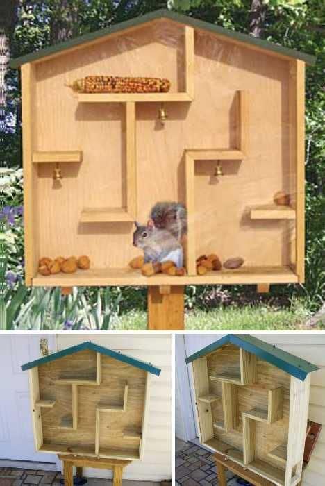 squirrel feeder  pinterest bird house plans bird