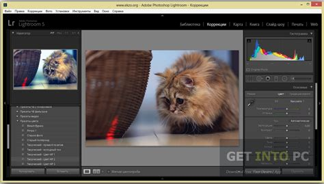 adobe photoshop lightroom 6 pc download amazoncom lightroom 5 download