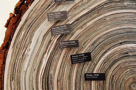 tree ring mooy story of the tree rings