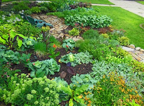 The Vegetable Garden Ideas For Your Gardening Inspiration Picture Of Vegetable Garden