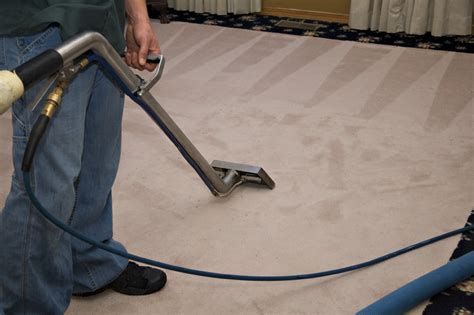 professional rug cleaning commercial cleaning services