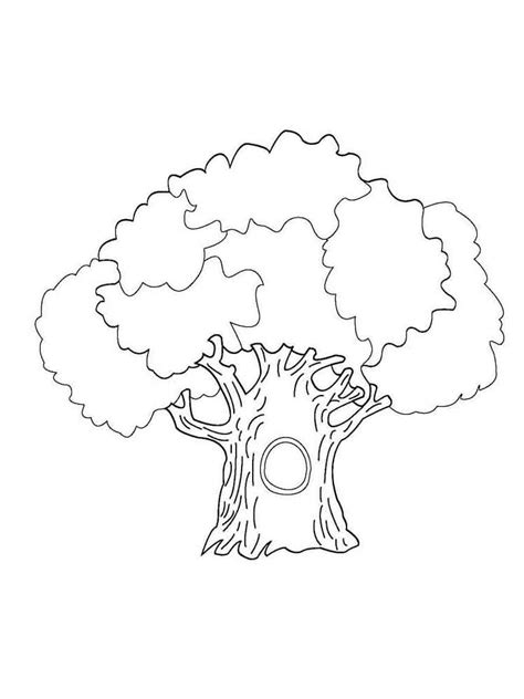 Coloring Tree by Trees Coloring Pages And Print Trees Coloring Pages