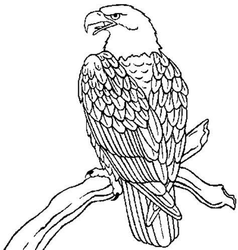 eagle coloring pages preschool bald eagle coloring page coloring com