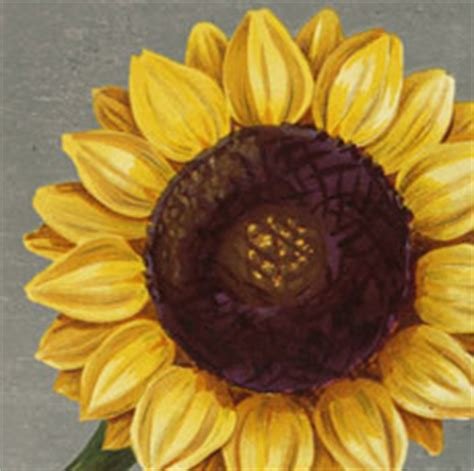 vintage sunflowers   graphics fairy